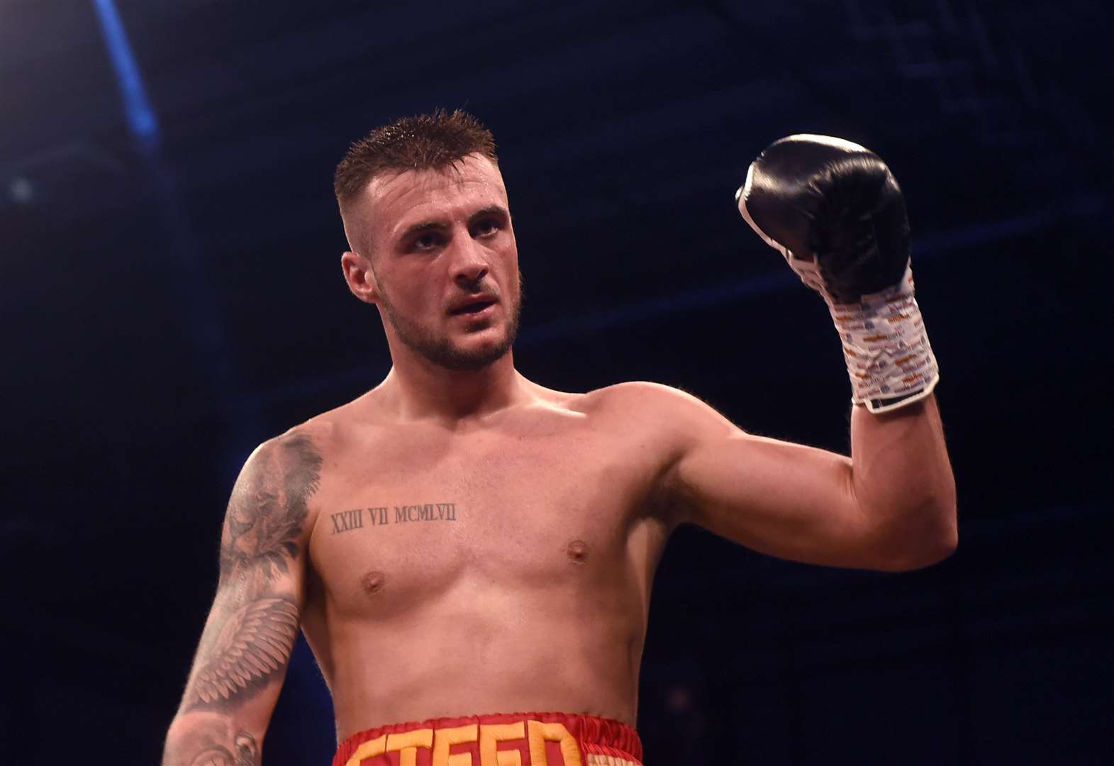 Boxing: Steed back in saddle for Norwich fight