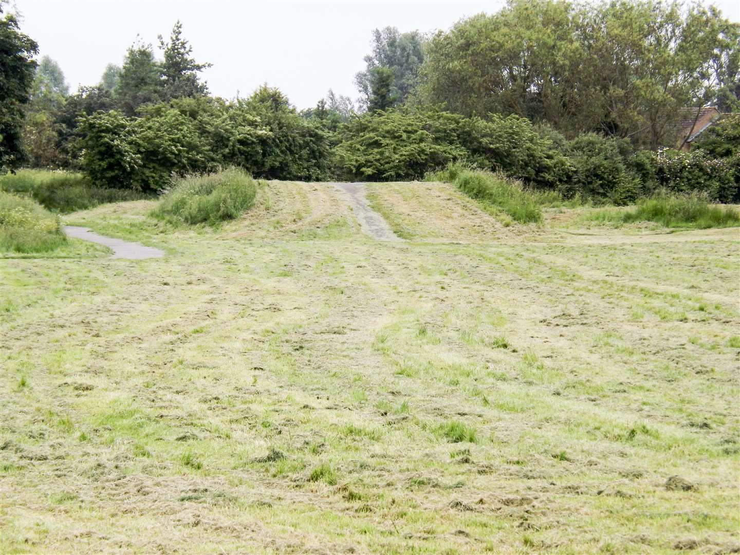 Grass has been cut in North Drive BMX play area - but areas have been missed and it looks a mess. (2440798)