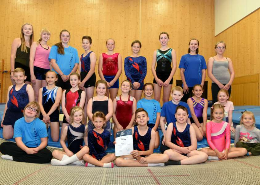 Fenland Flyers Wisbech trampolining club have been awarded �8358 by Sport England. ANL-160710-083825009