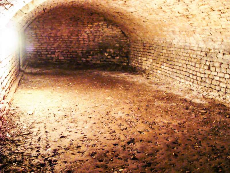 The vault under Wisbech Castle - the end wall shows there was another tunnel leading off but the access has been bricked up.ac