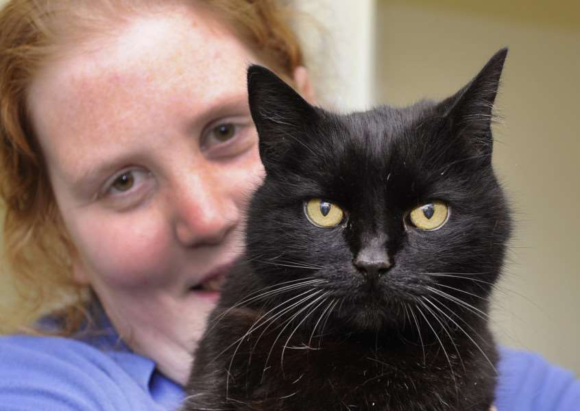 Cats looking for new homes, these are just a few at the Cats Protection Stowbridge'Becky Cavanagh (Senior Cat Care Assistant with Mouse (Male 16 years) ANL-160604-174941009
