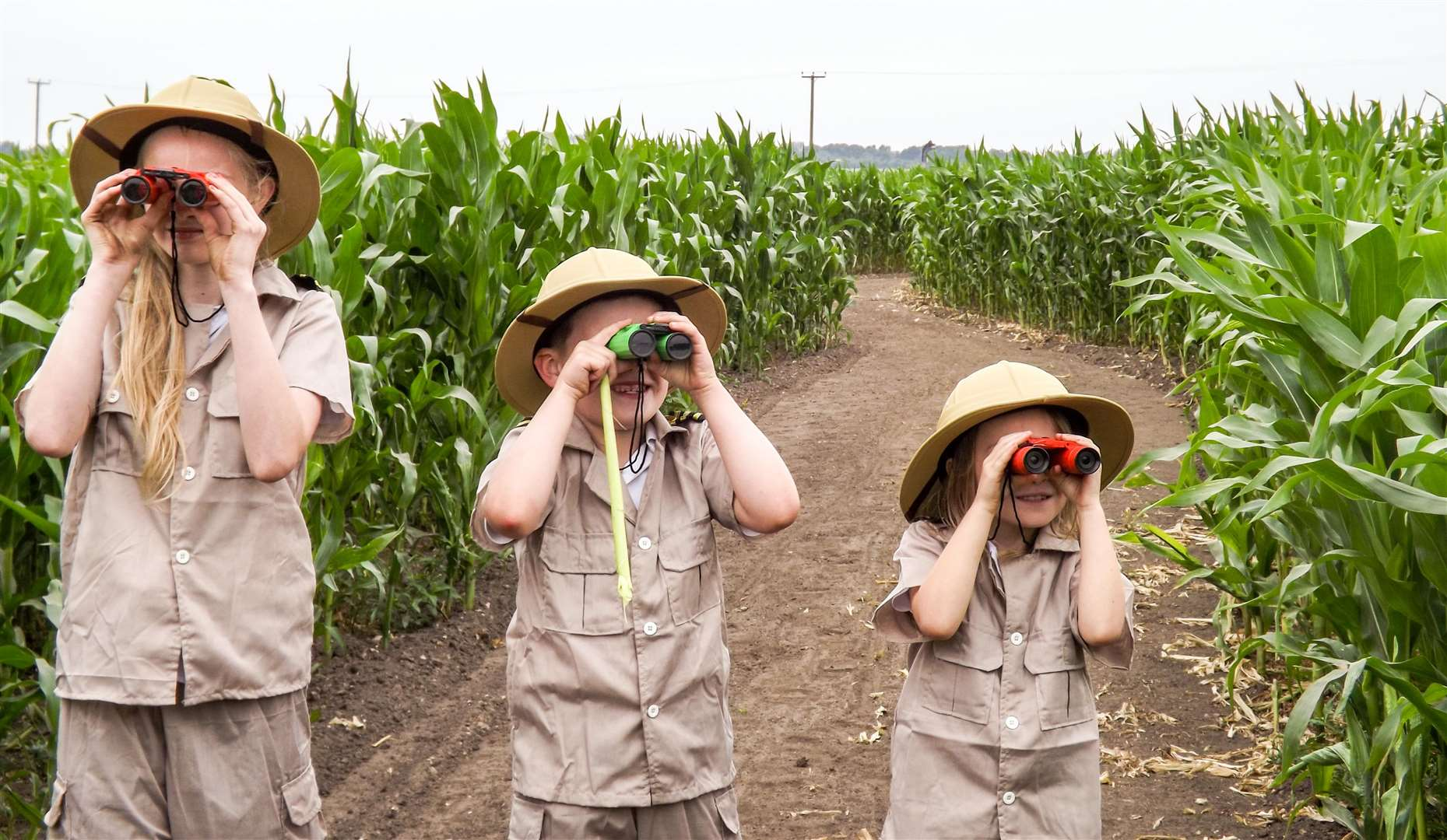 On the look out for dinosaurs in the Skylark maize maze: Annabell Wesley, 11, Owen Askew, 7 and Amelia Hathaway, 6. (3047058)