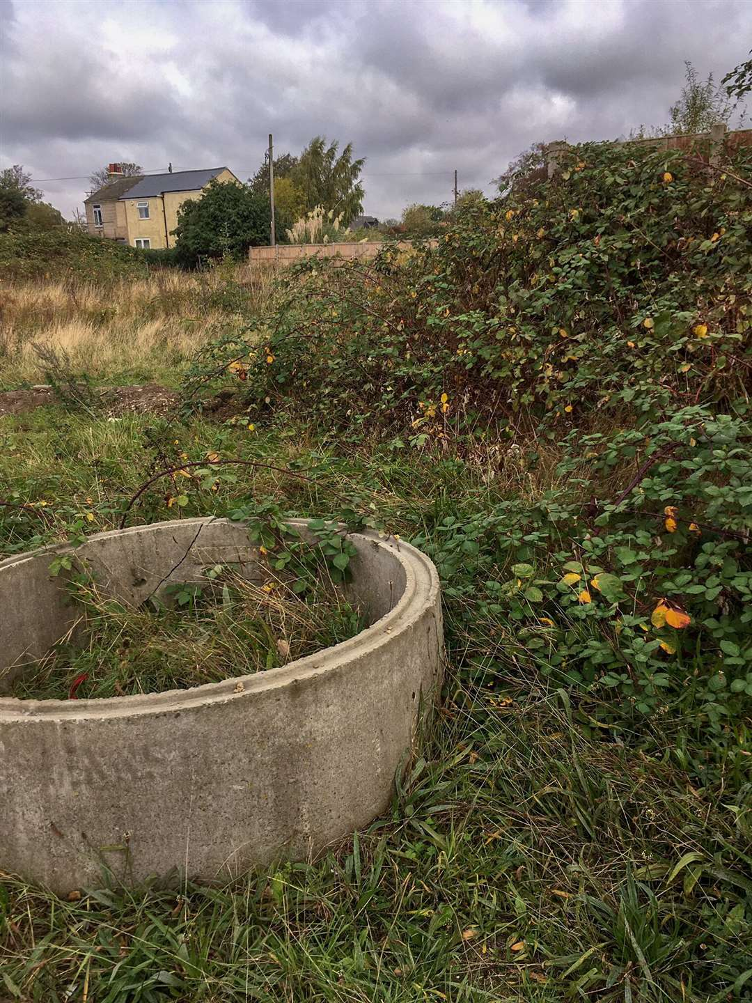 Residents on the Cromwell Gardens development in Wisbech are demanding developer Reason Homes complete the roads and pathways amid health and safety fears. This is supposed to a children's play area, instead it is an unsightly, overgrown mess, which is attracting rats. (11901660)