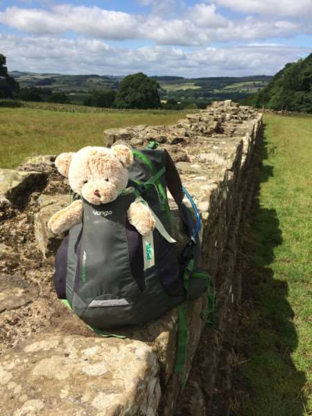 Linda Blatchly walked Hadrian's Wall in memory of her dad Mike Brown. PSPA's Hope Bear at the wall at Planetrees on day two.