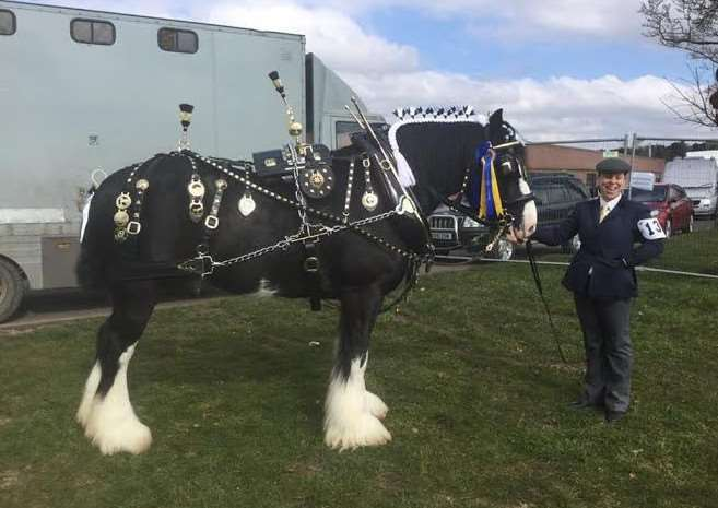 Upwell's Pip Read with one of her shire horses